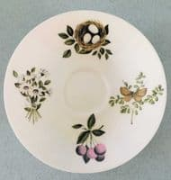 Crown Staffordshire | Queensbury | Tea For Two | 1950s